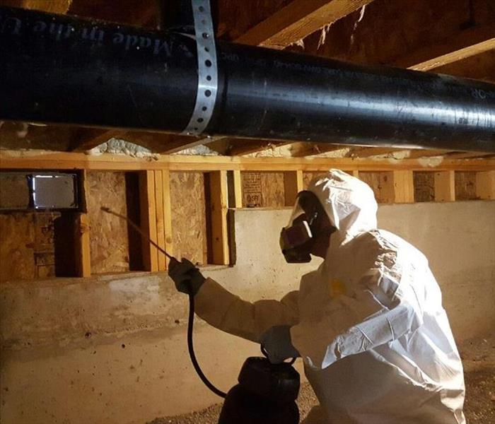 Mold Growth in Crawlspace After