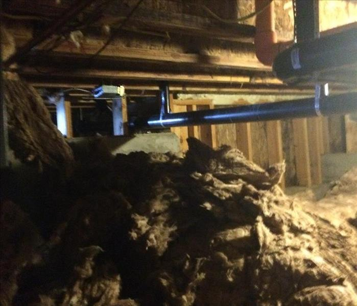 Mold Growth in Crawlspace Before