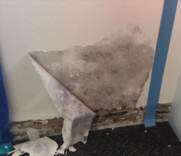 Mold at Medical Office Before