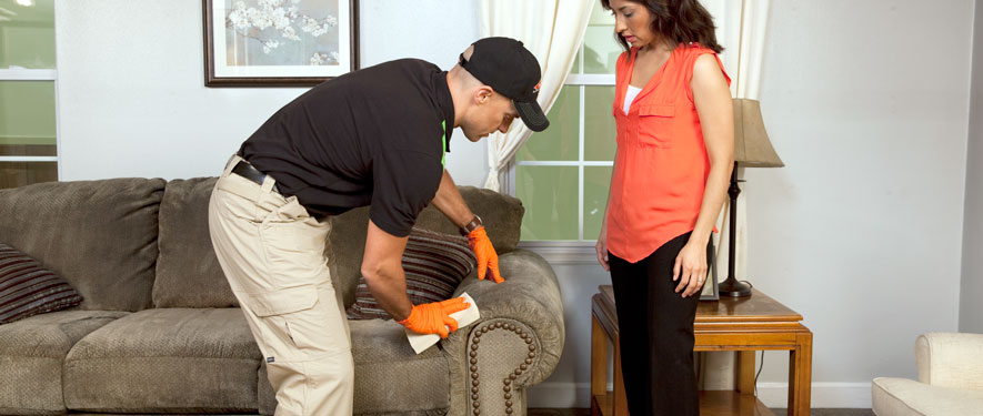 Reno, NV carpet upholstery cleaning